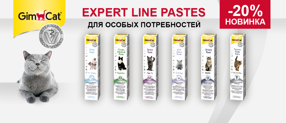 Expert Line Pastes